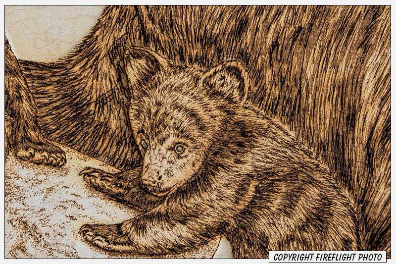 Black Bear Pyrography