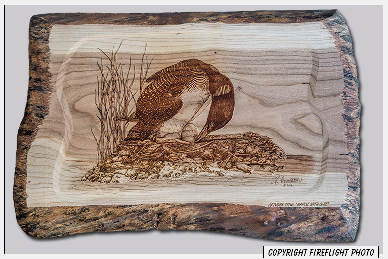 Common Loon Pyrography Full Image